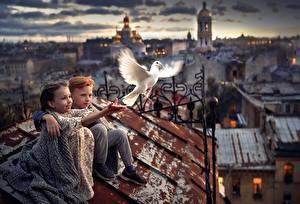 Bureaubladachtergronden Duiven Een dak Zitten Jongens Meisjes Onscherpe achtergrond kind Steden