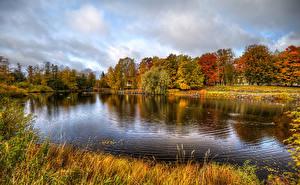 Bilder Russland Herbst Flusse Gras Bäume Vuoksa River near the Korela fortress Priozersk Natur