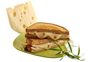 Bilder Sandwich Brot Käse Weißer hintergrund Teller Lebensmittel