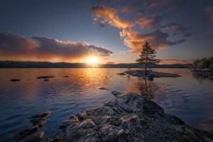 Fotos Sonnenaufgänge und Sonnenuntergänge See Norwegen Himmel Ringerike Natur