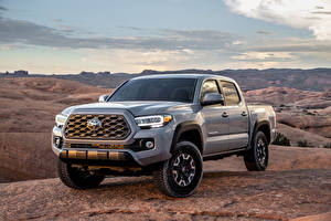Fotos Toyota Pick-up Graues 2020 Tacoma TRD Off-Road Double Cab Autos
