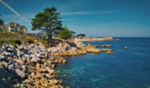Fotos USA Küste Gebäude Stein Ozean Kalifornien Bucht Bäume Monterey Bay