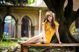 Desktop hintergrundbilder Asiatische Pose Sitzend Kleid Braunhaarige Bein Mädchens