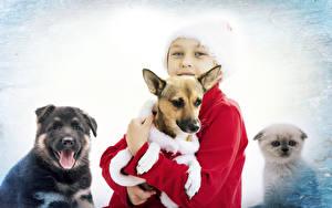 Hintergrundbilder Neujahr Hunde Jungen Blick Kinder Tiere