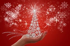 Hintergrundbilder Neujahr Schneeflocken Kleine Sterne Christbaum Hand