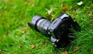 Hintergrundbilder Hautnah Unscharfer Hintergrund Gras Fotoapparat