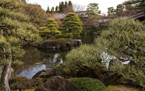 Papel de Parede Desktop Jardims Japão Pedras Lagoa Galho Koko-en garden, Himeji Cidades