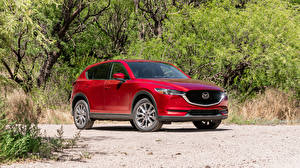 Hintergrundbilder Mazda Rot 2019 CX-5 Signature auto