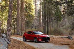 Fotos Mazda Rot Metallisch 2020 Mazda3 Skyactiv-G Hatchback