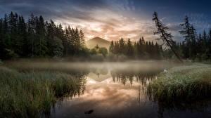 Bilder Morgen See Berg Österreich Nebel Steiermark