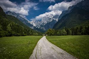 Fotos Berg Wege Wälder Gras