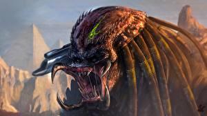 Bilder Predator - Film Fanart Grinsen Fantasy