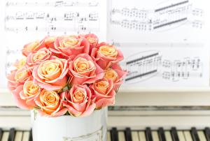 Image Rose Bouquets Notes Pink color flower