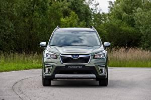 Fotos Subaru Vorne Grün Metallisch Softroader Forester 2019 automobil
