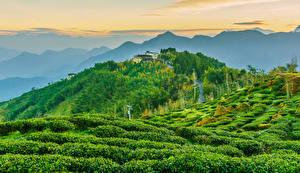 Bakgrunnsbilder Taiwan Bygning Åker Fjell Åser Busker Natur
