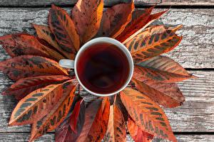 Hintergrundbilder Tee Herbst Bretter Tasse Blattwerk das Essen