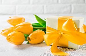 Hintergrundbilder Tulpen Gelb Schleife Geschenke Blüte