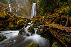 Hintergrundbilder Vereinigte Staaten Parks Wasserfall Stein Washington Felsen Laubmoose McClellan Falls