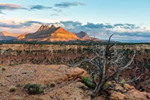 Hintergrundbilder Zion-Nationalpark Vereinigte Staaten Berg Utah