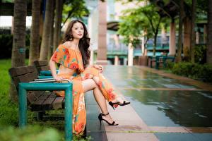 Fotos Asiaten Unscharfer Hintergrund Bank (Möbel) Sitzt Bein Braune Haare junge frau