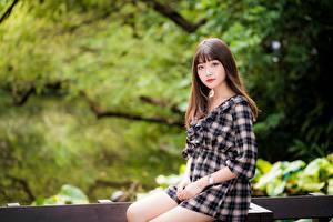 Fotos & Bilder Asiatische Bokeh Sitzend Kleid Braunhaarige Süß Blick Mädchens