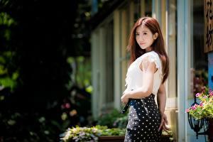 Fotos Asiaten Unscharfer Hintergrund Rock Braune Haare Junge frau Mädchens