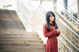 Photo Asian Blurred background Stairs Phone young woman