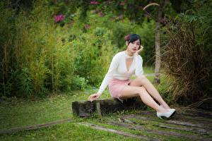 Bilder Asiaten Pose Sitzt Bein Rock Dekolleté Brünette Junge Frauen Mädchens