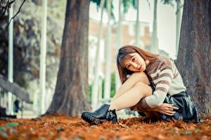 Hintergrundbilder Asiaten Posiert Sitzt Rock Sweatshirt Bein Braune Haare Starren junge frau