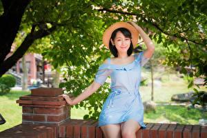 Fotos Asiaten Sitzt Kleid Der Hut Lächeln Brünette junge frau