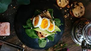 Bilder Butterbrot Eier Frühstück Basilienkraut das Essen