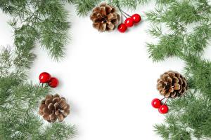 Bilder Neujahr Beere Weißer hintergrund Ast Zapfen Vorlage Grußkarte