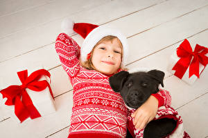 Picture New year Dog Little girls Smile Staring Winter hat Present Sweater child