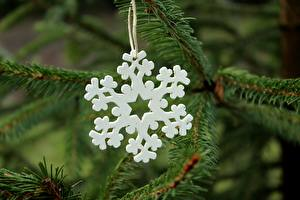 Pictures Closeup New year Blurred background Branches Snowflakes From wood