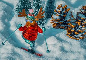 Picture Deer Skiing Toy Conifer cone Snow