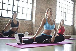 Bilder Fitness Fitnessstudio Körperliche Aktivität Drei 3 Sitzend Blondine Dehnübungen Mädchens