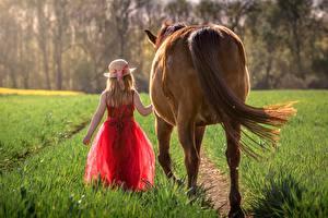 Hintergrundbilder Hauspferd Gras Hinten Kleine Mädchen Der Hut Kleid kind