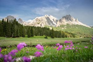 Hintergrundbilder Italien Gebirge Grünland Landschaftsfotografie Alpen Gras Dolomites