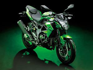 Hintergrundbilder Kawasaki Grün 2014-19 Z250SL Worldwide Motorrad