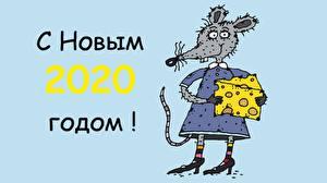 デスクトップの壁紙、、ラット、チーズ、新年、単語、2020、ロシアの、
