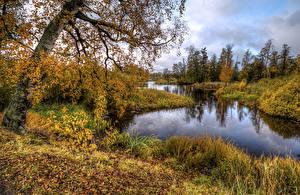 Bilder Russland Herbst Fluss HDRI Bäume Blatt Vuoksa River Priozersk Natur