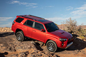 Fotos Toyota Sport Utility Vehicle Rot 2020 4Runner TRD Off-Road Autos