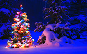 Bilder Winter Neujahr Nacht Schnee Fichten Weihnachtsbaum Lichterkette