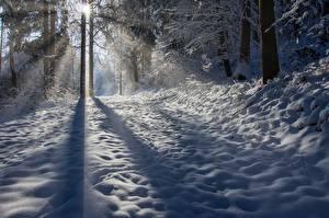 Hintergrundbilder Winter Schnee Schatten Lichtstrahl Bäume Natur
