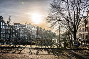 Bilder Amsterdam Niederlande Morgendämmerung und Sonnenuntergang Fahrräder Bäume Straßenlaterne