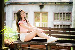 Bilder Asiaten Unscharfer Hintergrund Bank (Möbel) Sitzt Bein Shorts T-Shirt Braune Haare Starren junge frau