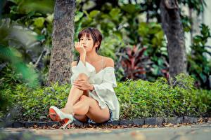 Hintergrundbilder Asiatische Bokeh Sitzt Bein Braunhaarige junge frau