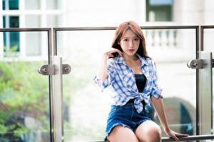 Fotos Asiaten Unscharfer Hintergrund Sitzen Shorts Hemd Braune Haare junge frau