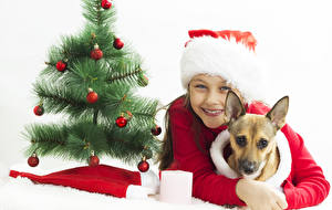 Pictures New year Dog White background New Year tree Balls Winter hat Staring child