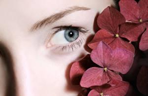 Fotos Hautnah Augen Starren junge frau